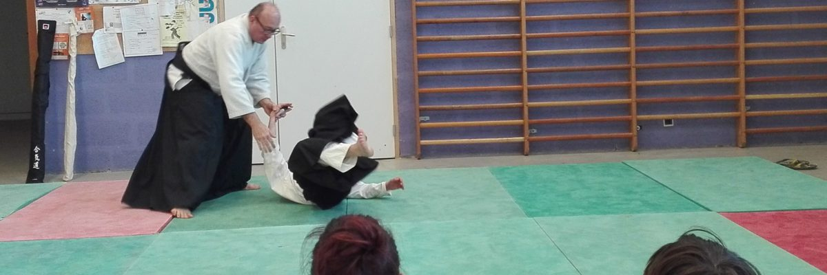 Démonstration Aikido Parthenay