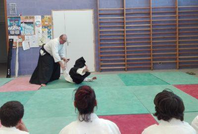 Démonstration Aikido Parthenay